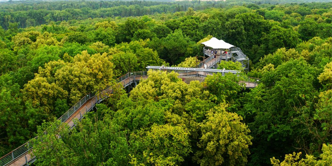 National Park Hainich
