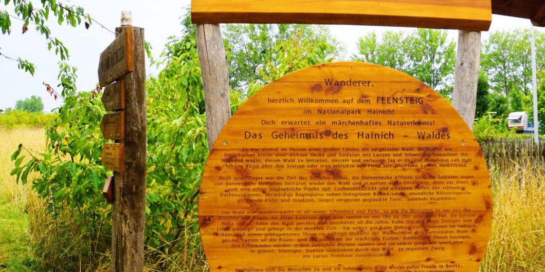 World Heritage region Wartburg-Hainich