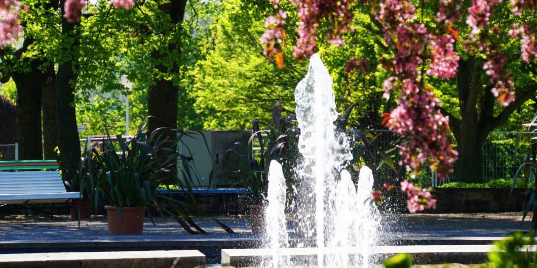 egapark erfurt big park with gardens and an amusement park
