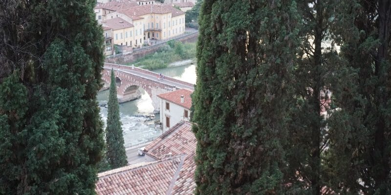 View over Verona - free viewpoint